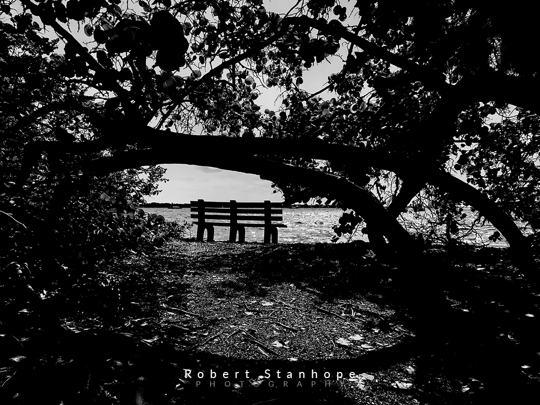 Black and white bench photograph.