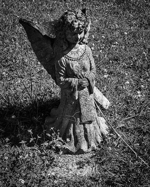 Black & white photo of an Angel taken by Robert Stanhope